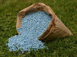 "<span class=""widget-headline"">Fertilizers</span>"