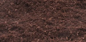 Black (Dark Spruce) Mulch